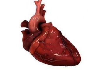 Устройство заменит больным людям сердце.