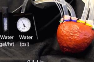 Ученые создали сердце из пенообразного силикона